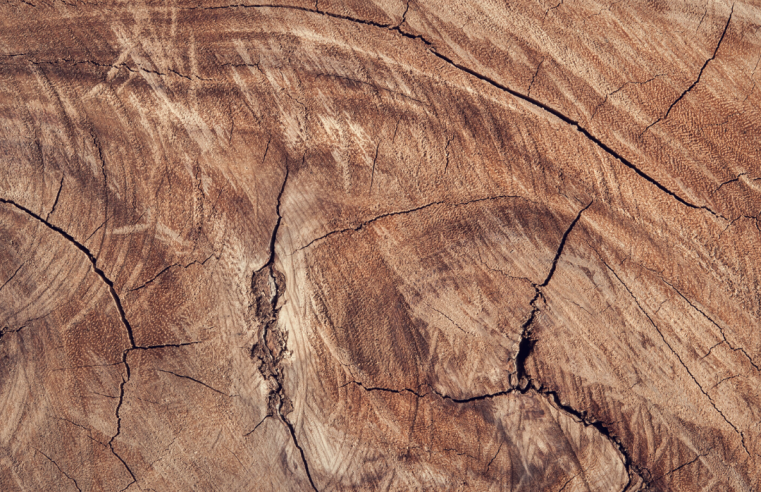 Gevelbekleding van hout en duurzaam ondernemen in het oog wil ook wat door thedutchbeerdad op fsom.