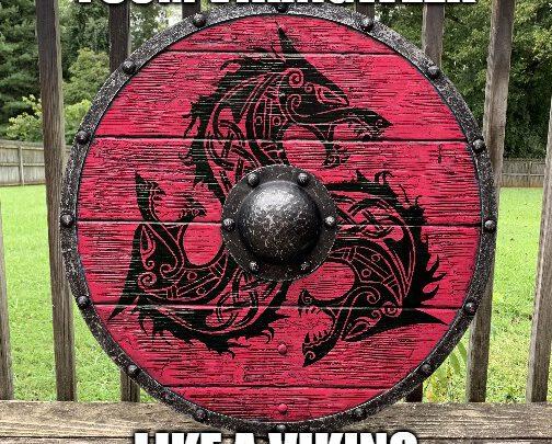 Like a Viking – Vikingweek bij FSOM!